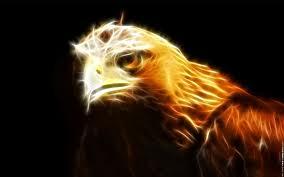 aigle-intervenant-lacher-prise