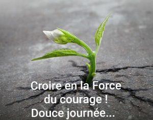 Croire en la Force du courage!